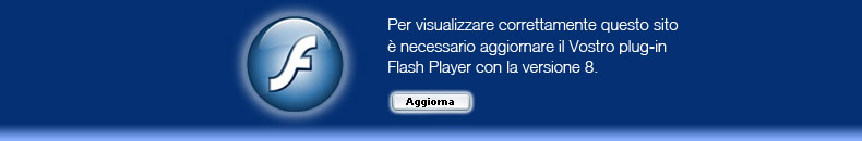Macromedia Falsh Player